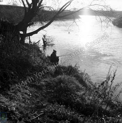 Fishing, River Swale, Brafferton, 1964